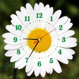 Купить Часы настенные кварцевые в стиле группы Ромашка на зеленом фоне 320*320 мм в России от 677.00 ₽