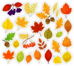 Купить Комплект декоративных наклеек Осенние листочки 468*460мм в России от 307.00 ₽