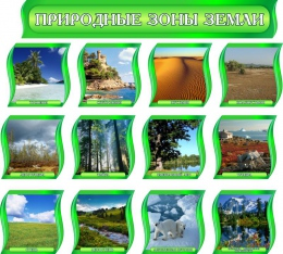 Купить Комплект стендов Природные зоны Земли для кабинета географии в зеленых тонах с шапкой 300*300 мм в России от 4782.00 ₽