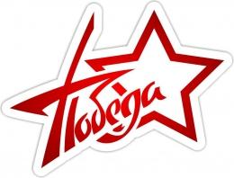Купить Наклейка Победа в форме звезды 500*380 мм в России от 271.00 ₽