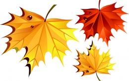 Наклейки на стенды Кленовые листья 12 шт.