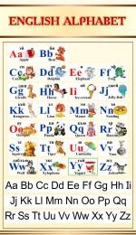 Купить Стенд Английский Алфавит с картинками в золотисто-бежевых тонах с прописными буквами 500*850мм в России от 1517.00 ₽