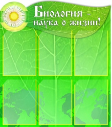Купить Стенд Биология - наука о жизни! в кабинет биологии 750*850мм в России от 2960.00 ₽