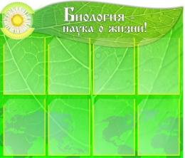 Купить Стенд Биология - наука о жизни! в кабинет биологии 8 карманов 1000*850мм в России от 3777.00 ₽