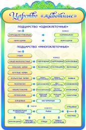 Купить Стенд  Царство Животные в кабинет биологии 600*900мм в России от 1993.00 ₽