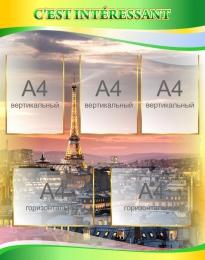 Купить Стенд CEST INTÉRESSANT для кабинета французского языка в золотисто-зелёных тонах 790*1000мм в России от 3220.00 ₽