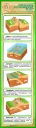 Купить Стенд Движения литосферных плит в золотисто-зелёных тонах 400*1400 мм в России от 2005.00 ₽