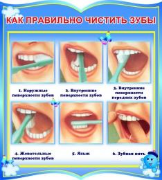 Купить Стенд фигурный Как правильно чистить зубы в группу Капитошка 270*300мм в России от 299.00 ₽