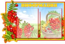 Купить Стенд Информация группа Рябинка 660*450 мм в России от 1256.00 ₽