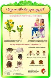 Купить Стенд  Изменчивость организмов в кабинет биологии 600*900мм в России от 1993.00 ₽