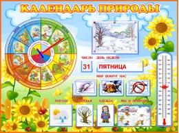 Купить Стенд Календарь природы группа Подсолнухи 800*600 мм в России от 2349.00 ₽