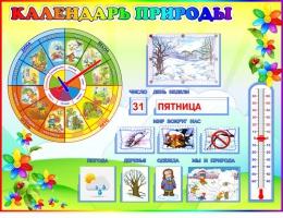 Купить Стенд Календарь Природы, развивающий в группу Семицветик 800*600 мм в России от 2349.00 ₽