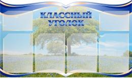 Купить Стенд Классный уголок  с изображением василькового поля 1000*600мм в России от 2754.00 ₽
