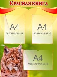Купить Стенд Красная книга на 3 кармана 600*800 мм в России от 0.00 ₽
