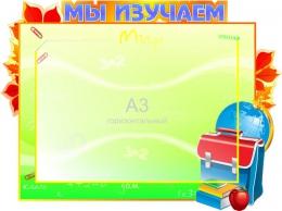 Купить Стенд  Мы изучаем на карман А3 600*450мм в России от 1146.00 ₽