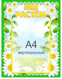 Купить Стенд Мы растем для группы Ромашка с карманом А4 360*450 мм в России от 689.00 ₽