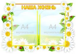 Купить Стенд Наша жизнь  группа Ромашка на 2 кармана А4 фигурный  650*470 мм в России от 1348.00 ₽