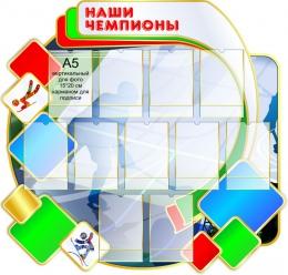Купить Стенд Наши чемпионы в бело-зелёно-красных  с голубым тонах 1030*1080мм в России от 4710.00 ₽