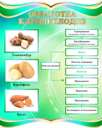 Купить Стенд Обработка клубнеплодов в бирюзовых тонах 690*860мм в России от 2308.00 ₽