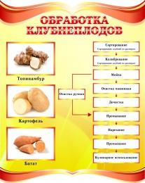 Купить Стенд Обработка клубнеплодов в золотисто-красных тонах 690*860мм в России от 2308.00 ₽