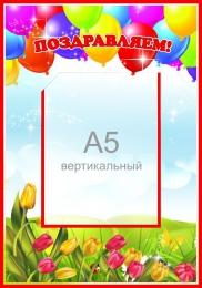 Купить Стенд Поздравляем с шариками 280*400мм в России от 450.00 ₽