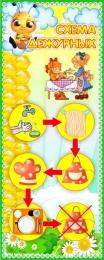 Купить Стенд Схема дежурных группа Пчёлка 200*500 мм в России от 358.00 ₽