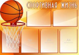 Купить Стенд Спортивная жизнь - Баскетбол 1000*700 мм в России от 3203.00 ₽