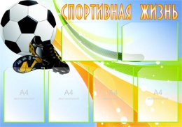 Купить Стенд Спортивная жизнь - Футбол 1000*700 мм в России от 3203.00 ₽