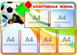 Купить Стенд Спортивная жизнь с мячом 1000*710 мм в России от 3100.00 ₽