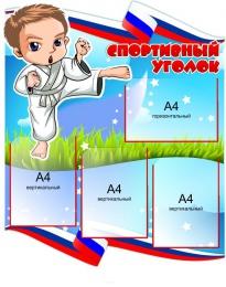 Купить Стенд Спортивный уголок Карате 750*900 мм в России от 2811.00 ₽