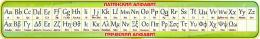 Купить Стенд Таблица с Латинским и Греческим алфавитом в золотисто-зеленых тонах 1950*300мм в России от 2088.00 ₽