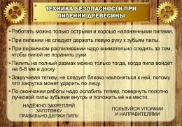 Купить Стенд Техника безопасности при пилении древесины в кабинет трудового обучения 1000*700мм в России от 2499.00 ₽