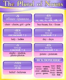 Купить Стенд The Plural of Nouns в кабинет английского языка в фиолетово-жёлтых тонах 500*600 мм в России от 1128.00 ₽