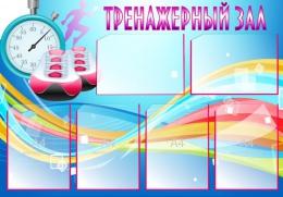 Купить Стенд Тренажерный зал в синих тонах 1000*700 мм в России от 3063.00 ₽