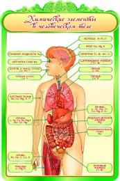 Купить Стенд Химические элементы в человеческом теле для кабинета Биологии 600*900мм в России от 2101.00 ₽