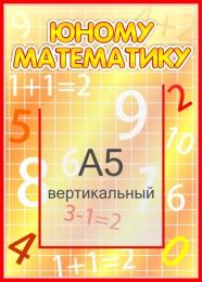 Купить Стенд  Юному математику с карманом А5 265*370мм в России от 400.00 ₽