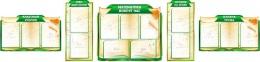 Купить Стендовая композиция для кабинета математики в золотисто-зеленых тонах 3180*760 мм в России от 7639.00 ₽