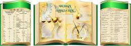 Купить Стендовая  композиция Физика вокруг нас  в виде раскрытой книги в золотисто-зеленых тонах  2800*1000мм в России от 10389.00 ₽