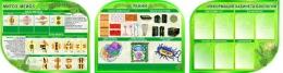 Купить Стендовая композиция в кабинет биологии Строение клетки ткани растений 3300*850 мм в России от 10565.00 ₽