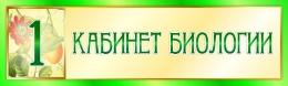 Купить Табличка  для кабинета Биологии 330*100 мм в России от 171.00 ₽