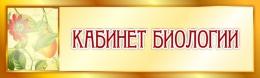 Купить Табличка Кабинет Биологии в золотистых тонах 330*100 мм в России от 171.00 ₽