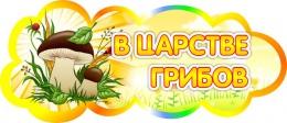 Купить Табличка В царстве грибов 350*150 мм в России от 272.00 ₽