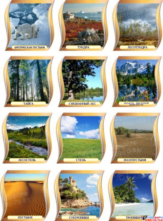 Комплект стендов Природные зоны для кабинета географии 300*300 мм