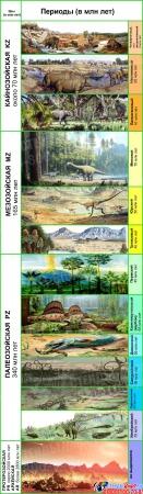 Стенд Этапы развития жизни на Земле 390*1380 мм Изображение #1