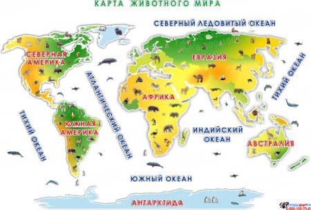 Композиция Карта животного мира  4080*2770 мм