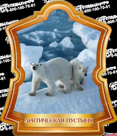 Комплект стендов Природные зоны Земли Изображение #4