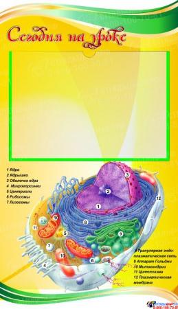 Стенд фигурный Биология - наука о жизни! В жёлтых тонах 1900*900мм Изображение #1