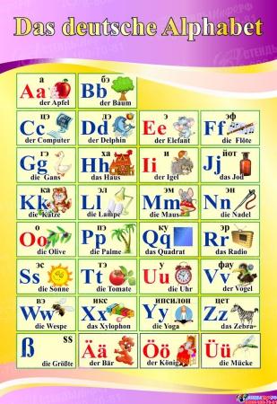 Стенд Das deutsche Alphabet  Алфавит  в кабинет немецкого языка в золотисто-сиреневых тонах 530*770 мм