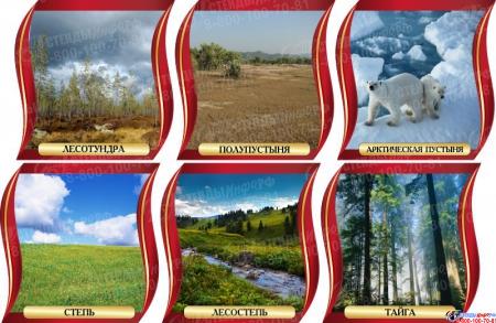Комплект стендов Природные зоны для кабинета географии в золотисто-бордовых тонах 300*300 мм Изображение #2