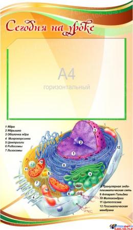 Стенд фигурный Биология - наука о жизни! 1900*900мм Изображение #2